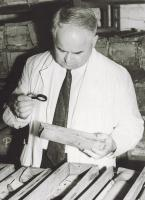 Jan Wyżykowski przegląda próbki z rdzeni wiertniczych